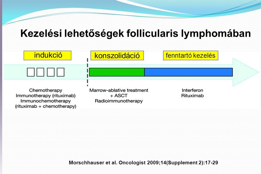 Morschhauser et al.