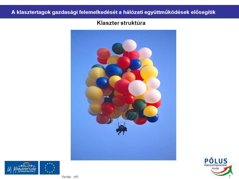 Hálózatfejlesztési Iroda A klasztertagok gazdasági felemelkedését a hálózati együttműködések elősegítik Klaszter struktúra 7 Forrás:HFI
