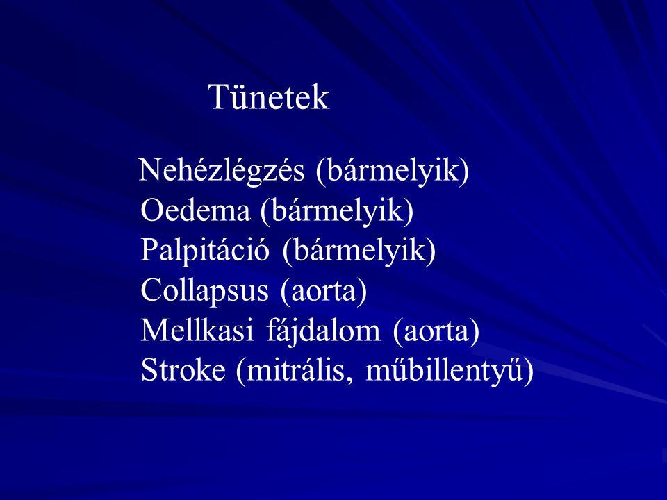 Tünetek Nehézlégzés (bármelyik) Oedema (bármelyik) Palpitáció (bármelyik) Collapsus (aorta) Mellkasi fájdalom (aorta) Stroke (mitrális, műbillentyű)