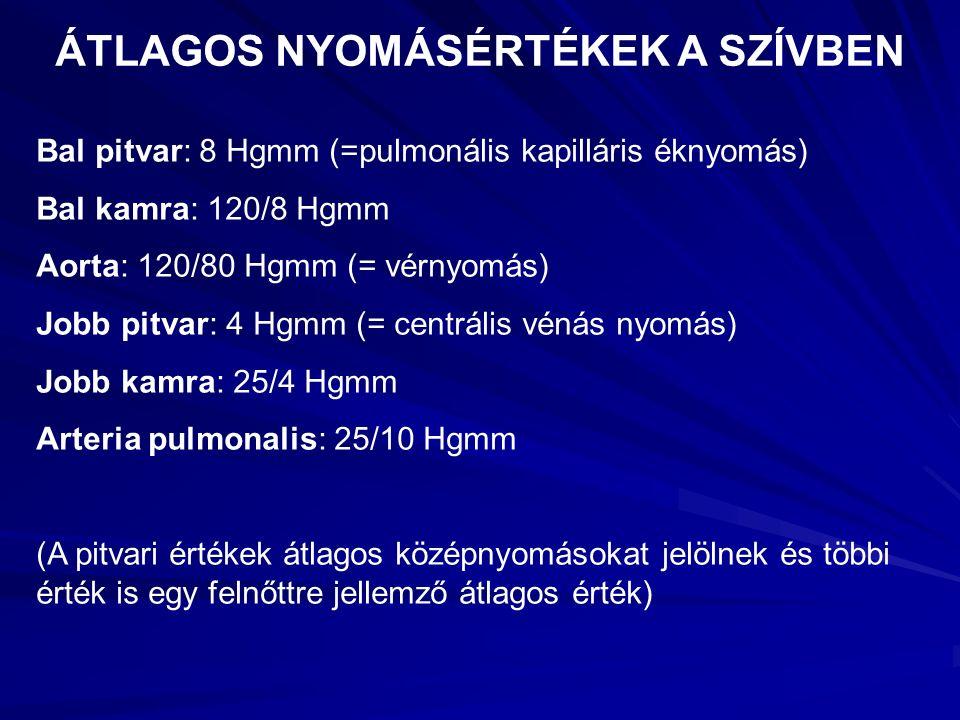 ÁTLAGOS NYOMÁSÉRTÉKEK A SZÍVBEN Bal pitvar: 8 Hgmm (=pulmonális kapilláris éknyomás) Bal kamra: 120/8 Hgmm Aorta: 120/80 Hgmm (= vérnyomás) Jobb pitva