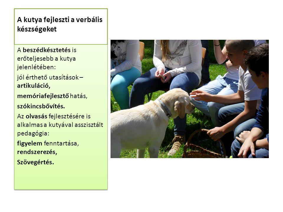 A kutya fejleszti a verbális készségeket A beszédkésztetés is erőteljesebb a kutya jelenlétében: jól érthető utasítások – artikuláció, memóriafejlesztő hatás, szókincsbővítés.