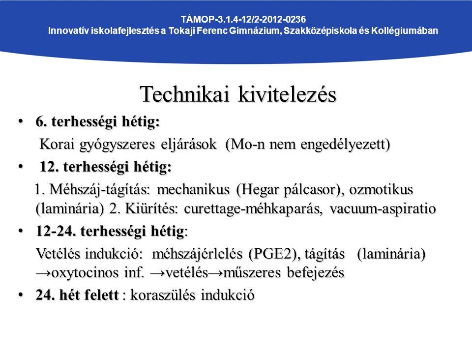 TÁMOP-3.1.4-12/2-2012-0236 Innovatív iskolafejlesztés a Tokaji Ferenc Gimnázium, Szakközépiskola és Kollégiumában Technikai kivitelezés 6.
