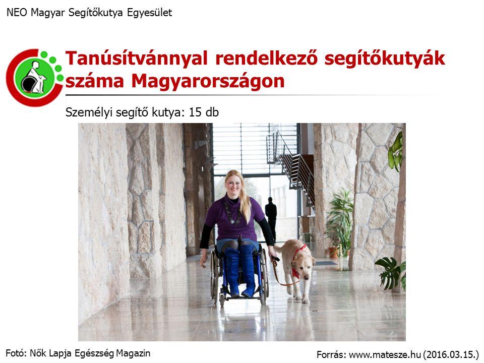 Kritériumok NEO Magyar Segítőkutya Egyesület Tematikák intézményi és életkori sajátosságok szerint (pl.