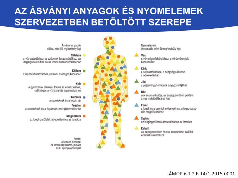AZ ÁSVÁNYI ANYAGOK ÉS NYOMELEMEK SZERVEZETBEN BETÖLTÖTT SZEREPE TÁMOP-6.1.2.B-14/1-2015-0001