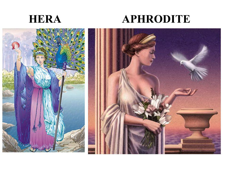 HERAAPHRODITE