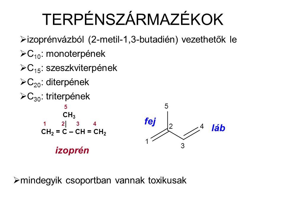TERPÉNSZÁRMAZÉKOK  izoprénvázból (2-metil-1,3-butadién) vezethetők le  C 10 : monoterpének  C 15 : szeszkviterpének  C 20 : diterpének  C 30 : triterpének 5 CH 3 1 2 | 3 4 CH 2 = C – CH = CH 2 izoprén  mindegyik csoportban vannak toxikusak 5 1 2 3 4 fej láb
