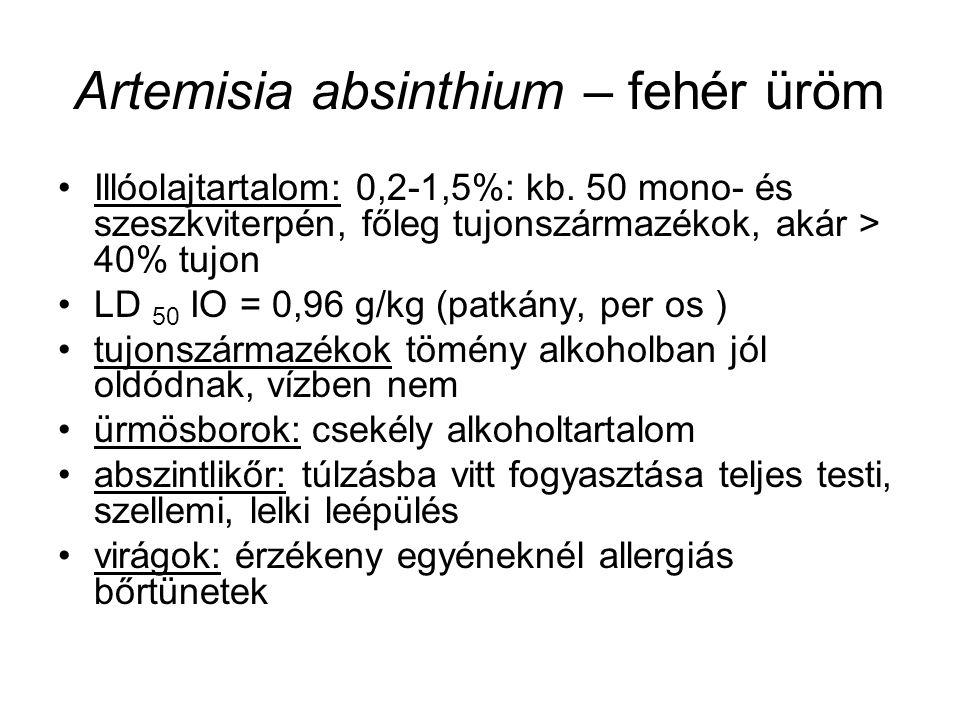 Artemisia absinthium – fehér üröm Illóolajtartalom: 0,2-1,5%: kb.