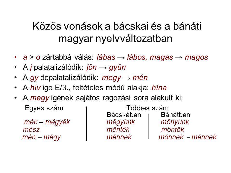 Közös vonások a bácskai és a bánáti magyar nyelvváltozatban a > o zártabbá válás: lábas → lábos, magas → magos A j palatalizálódik: jön → gyün A gy depalatalizálódik: megy → mén A hív ige E/3., feltételes módú alakja: hína A megy igének sajátos ragozási sora alakult ki: Egyes szám Többes szám Bácskában Bánátban mék – mëgyëkmëgyünk mönyünk mészmëntëk möntök mén – mëgy mënnek mönnek ‒ mënnek