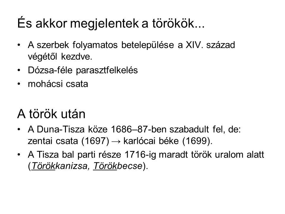 És akkor megjelentek a törökök... A szerbek folyamatos betelepülése a XIV.