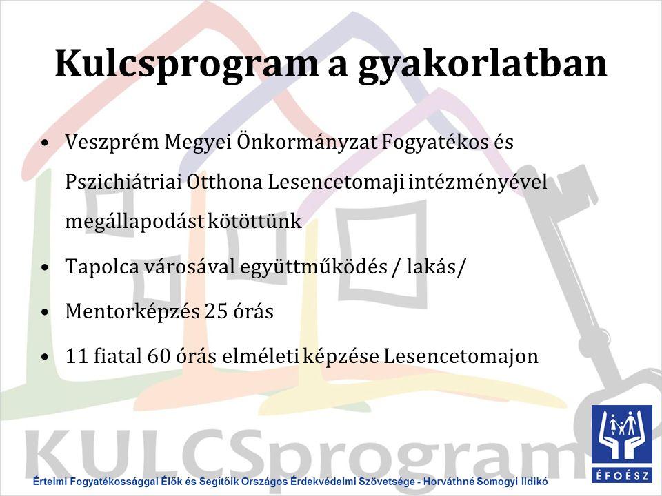 Kulcsprogram a gyakorlatban Veszprém Megyei Önkormányzat Fogyatékos és Pszichiátriai Otthona Lesencetomaji intézményével megállapodást kötöttünk Tapolca városával együttműködés / lakás/ Mentorképzés 25 órás 11 fiatal 60 órás elméleti képzése Lesencetomajon