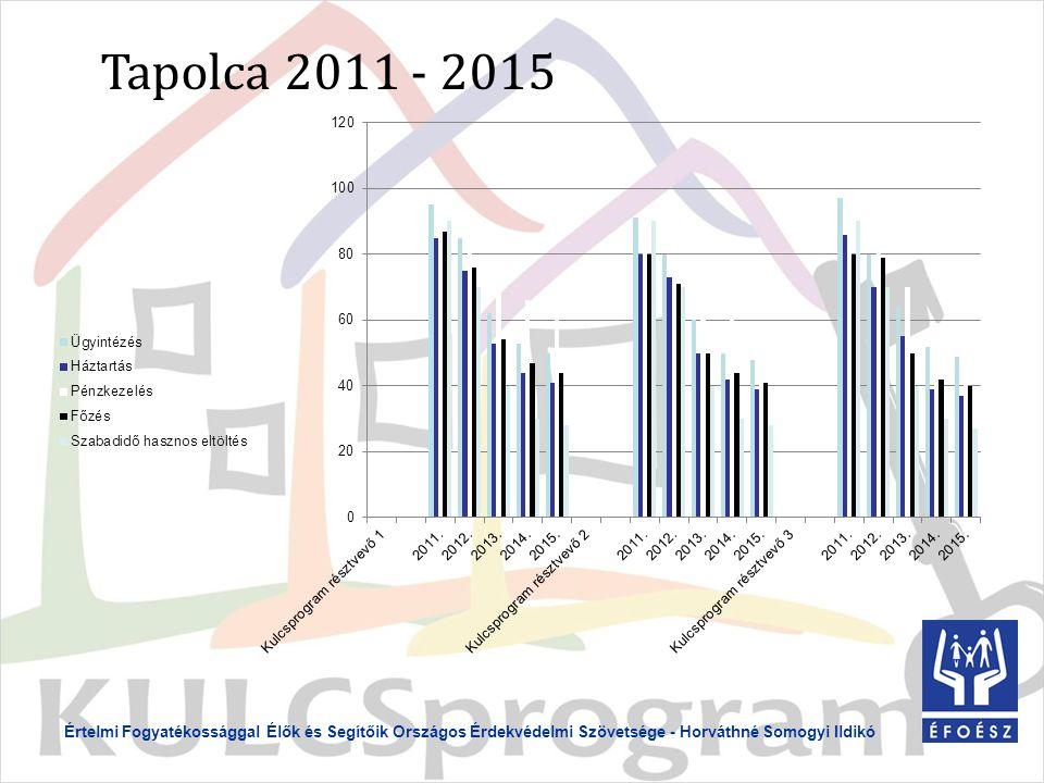 Értelmi Fogyatékossággal Élők és Segítőik Országos Érdekvédelmi Szövetsége - Horváthné Somogyi Ildikó Tapolca 2011 - 2015