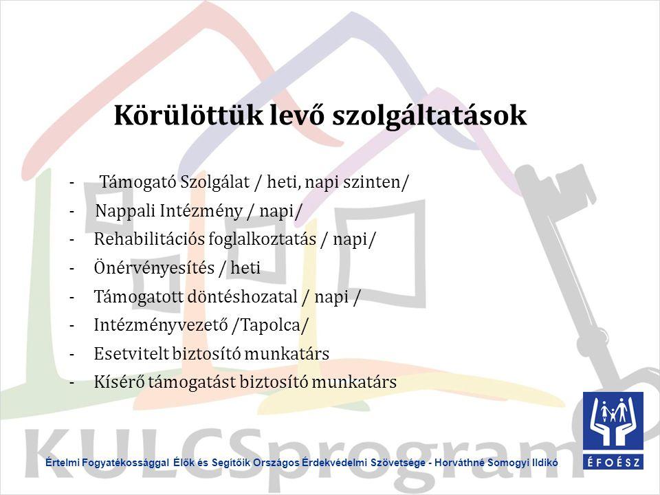 Körülöttük levő szolgáltatások - Támogató Szolgálat / heti, napi szinten/ - Nappali Intézmény / napi/ -Rehabilitációs foglalkoztatás / napi/ -Önérvényesítés / heti -Támogatott döntéshozatal / napi / -Intézményvezető /Tapolca/ -Esetvitelt biztosító munkatárs -Kísérő támogatást biztosító munkatárs Értelmi Fogyatékossággal Élők és Segítőik Országos Érdekvédelmi Szövetsége - Horváthné Somogyi Ildikó