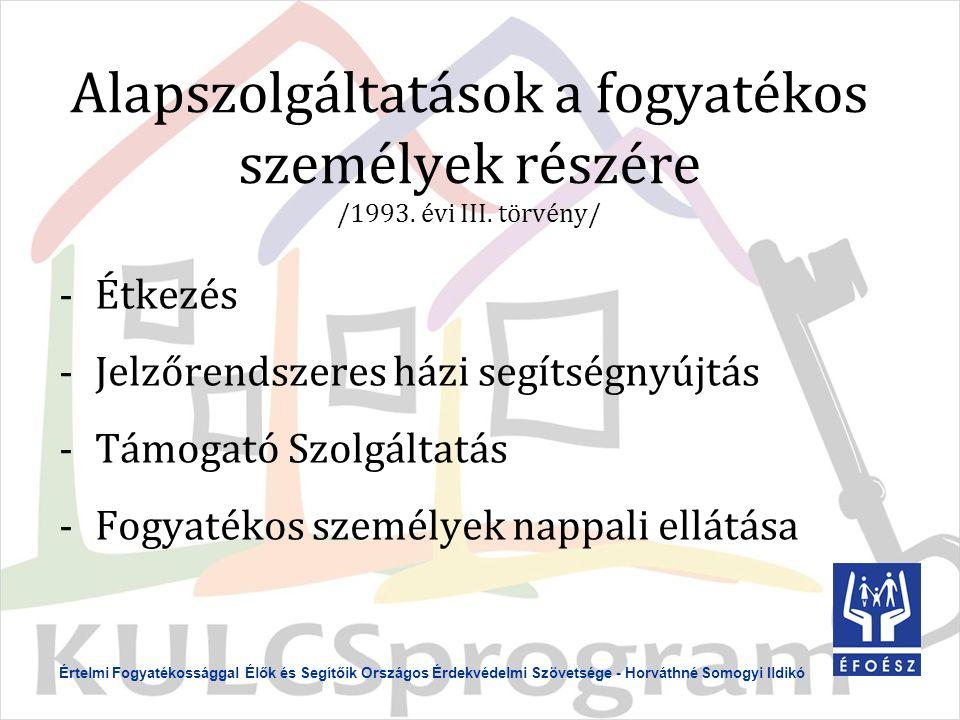 Alapszolgáltatások a fogyatékos személyek részére /1993.
