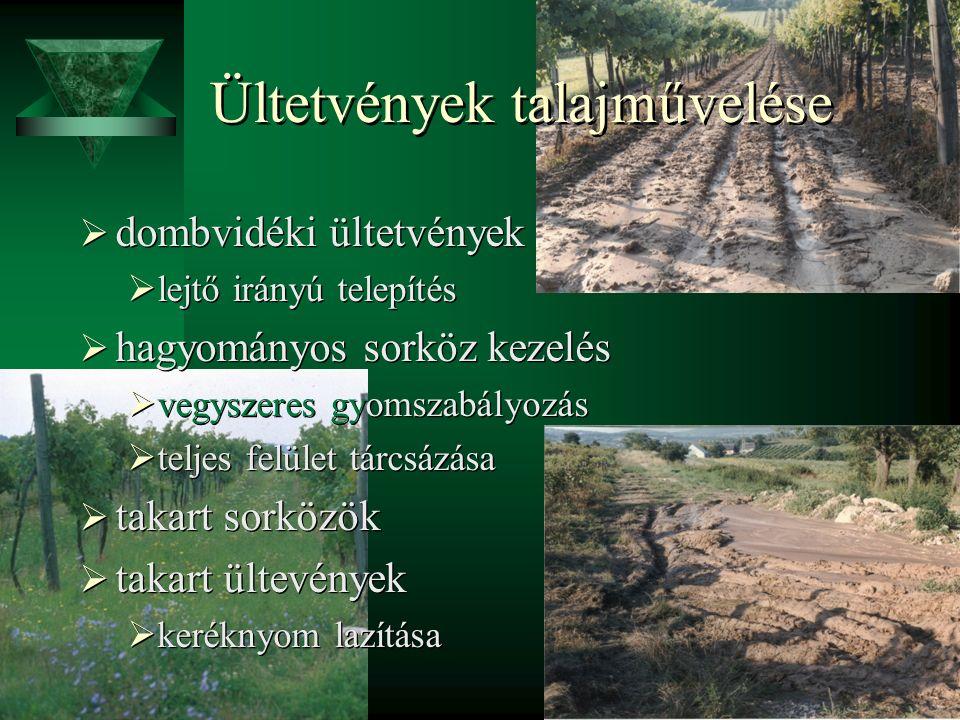 Ültetvények talajművelése  dombvidéki ültetvények  lejtő irányú telepítés  hagyományos sorköz kezelés  vegyszeres gyomszabályozás  teljes felület tárcsázása  takart sorközök  takart ültevények  keréknyom lazítása  dombvidéki ültetvények  lejtő irányú telepítés  hagyományos sorköz kezelés  vegyszeres gyomszabályozás  teljes felület tárcsázása  takart sorközök  takart ültevények  keréknyom lazítása