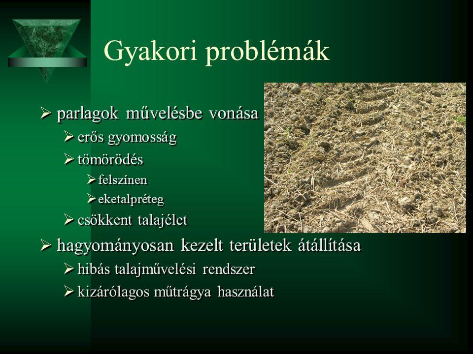 Gyakori problémák  parlagok művelésbe vonása  erős gyomosság  tömörödés  felszínen  eketalpréteg  csökkent talajélet  hagyományosan kezelt területek átállítása  hibás talajművelési rendszer  kizárólagos műtrágya használat  parlagok művelésbe vonása  erős gyomosság  tömörödés  felszínen  eketalpréteg  csökkent talajélet  hagyományosan kezelt területek átállítása  hibás talajművelési rendszer  kizárólagos műtrágya használat