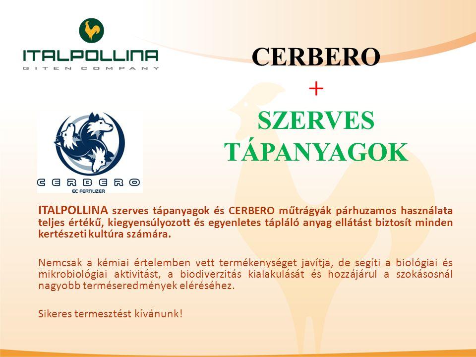 ITALPOLLINA szerves tápanyagok és CERBERO műtrágyák párhuzamos használata teljes értékű, kiegyensúlyozott és egyenletes tápláló anyag ellátást biztosí