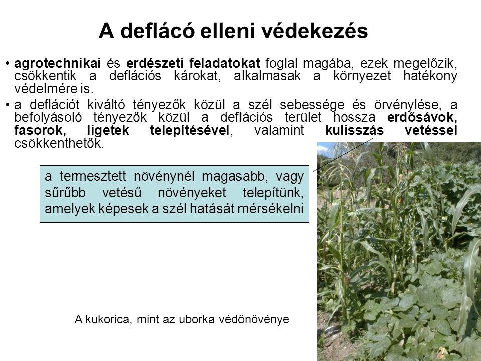 A deflácó elleni védekezés agrotechnikai és erdészeti feladatokat foglal magába, ezek megelőzik, csökkentik a deflációs károkat, alkalmasak a környezet hatékony védelmére is.