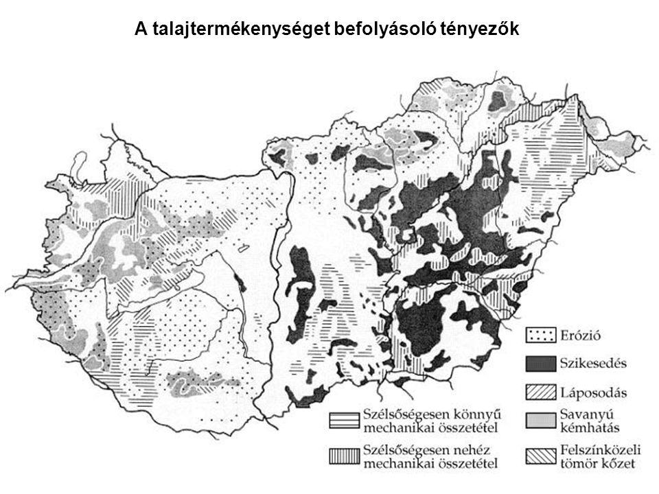 A talajtermékenységet befolyásoló tényezők