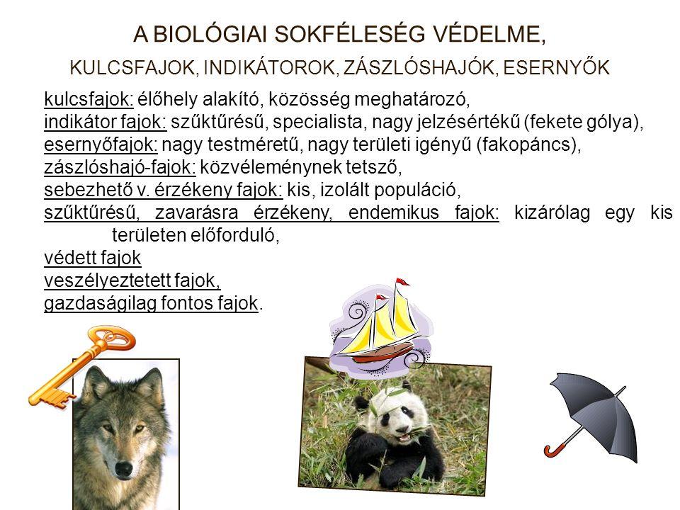 A BIOLÓGIAI SOKFÉLESÉG VÉDELME, KULCSFAJOK, INDIKÁTOROK, ZÁSZLÓSHAJÓK, ESERNYŐK kulcsfajok: élőhely alakító, közösség meghatározó, indikátor fajok: szűktűrésű, specialista, nagy jelzésértékű (fekete gólya), esernyőfajok: nagy testméretű, nagy területi igényű (fakopáncs), zászlóshajó-fajok: közvéleménynek tetsző, sebezhető v.