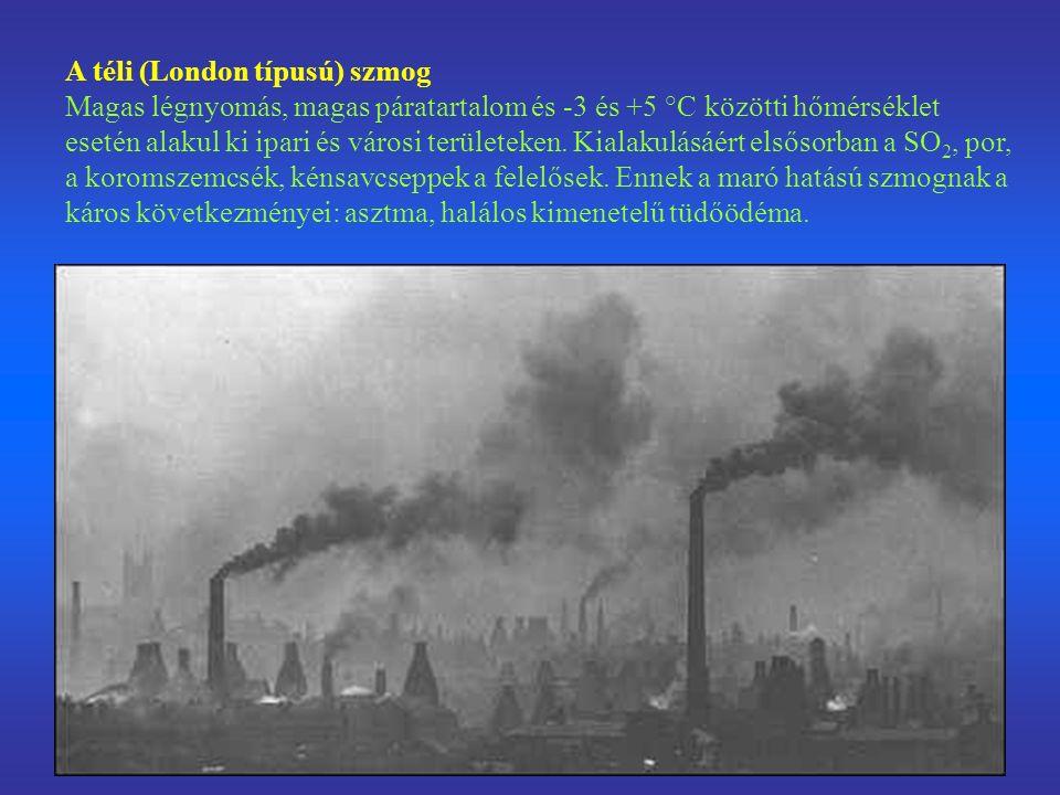 A téli (London típusú) szmog Magas légnyomás, magas páratartalom és -3 és +5 °C közötti hőmérséklet esetén alakul ki ipari és városi területeken.
