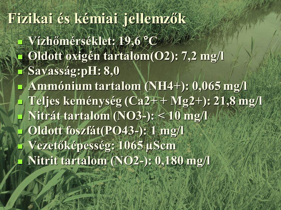 Fizikai és kémiai jellemzők Vízhőmérséklet: 19,6 °C Vízhőmérséklet: 19,6 °C Oldott oxigén tartalom(O2): 7,2 mg/l Oldott oxigén tartalom(O2): 7,2 mg/l Savasság:pH: 8,0 Savasság:pH: 8,0 Ammónium tartalom (NH4+): 0,065 mg/l Ammónium tartalom (NH4+): 0,065 mg/l Teljes keménység (Ca2+ + Mg2+): 21,8 mg/l Teljes keménység (Ca2+ + Mg2+): 21,8 mg/l Nitrát tartalom (NO3-): < 10 mg/l Nitrát tartalom (NO3-): < 10 mg/l Oldott foszfát(PO43-): 1 mg/l Oldott foszfát(PO43-): 1 mg/l Vezetőképesség: 1065 µScm Vezetőképesség: 1065 µScm Nitrit tartalom (NO2-): 0,180 mg/l Nitrit tartalom (NO2-): 0,180 mg/l