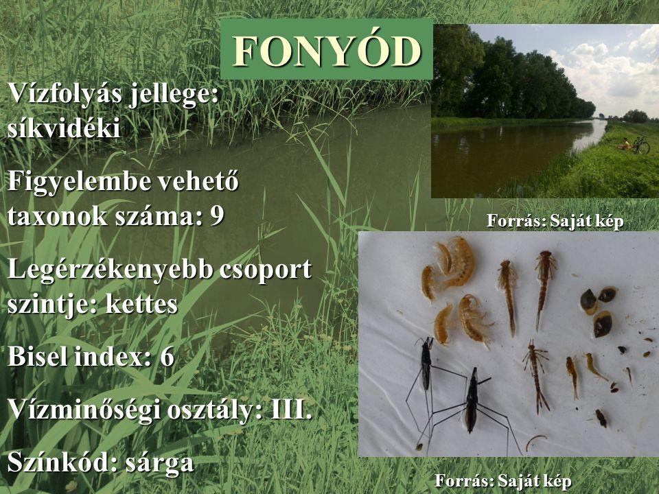 FONYÓD Vízfolyás jellege: síkvidéki Figyelembe vehető taxonok száma: 9 Legérzékenyebb csoport szintje: kettes Bisel index: 6 Vízminőségi osztály: III.