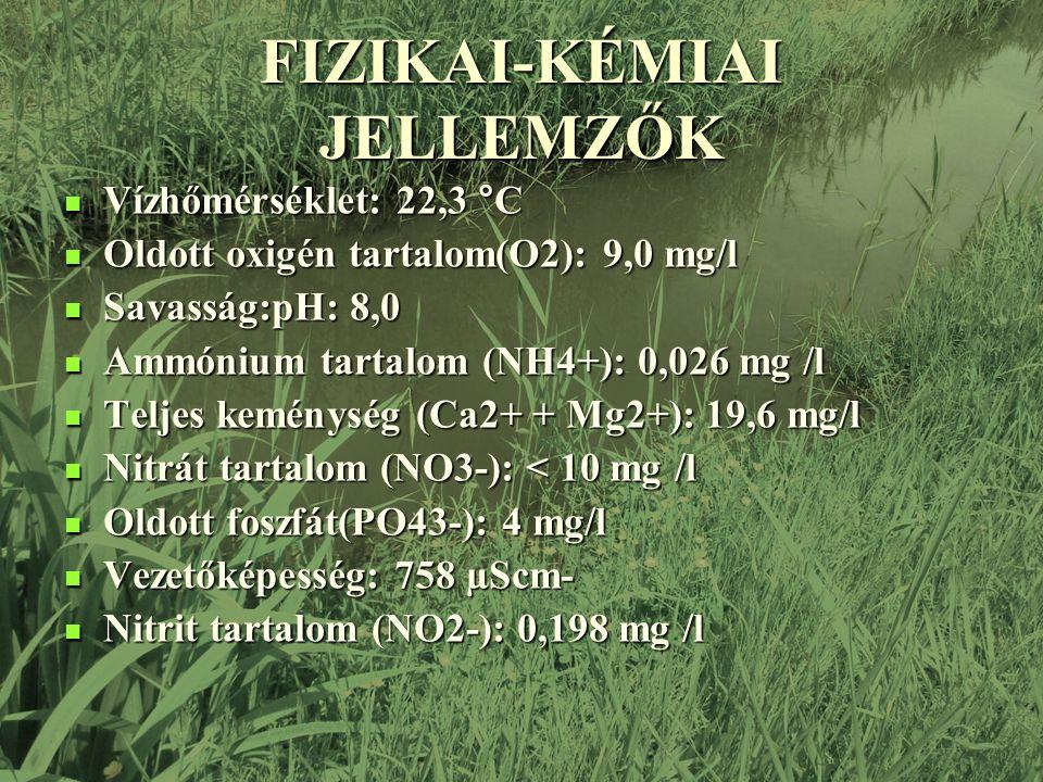 FIZIKAI-KÉMIAI JELLEMZŐK Vízhőmérséklet: 22,3 °C Vízhőmérséklet: 22,3 °C Oldott oxigén tartalom(O2): 9,0 mg/l Oldott oxigén tartalom(O2): 9,0 mg/l Savasság:pH: 8,0 Savasság:pH: 8,0 Ammónium tartalom (NH4+): 0,026 mg /l Ammónium tartalom (NH4+): 0,026 mg /l Teljes keménység (Ca2+ + Mg2+): 19,6 mg/l Teljes keménység (Ca2+ + Mg2+): 19,6 mg/l Nitrát tartalom (NO3-): < 10 mg /l Nitrát tartalom (NO3-): < 10 mg /l Oldott foszfát(PO43-): 4 mg/l Oldott foszfát(PO43-): 4 mg/l Vezetőképesség: 758 µScm- Vezetőképesség: 758 µScm- Nitrit tartalom (NO2-): 0,198 mg /l Nitrit tartalom (NO2-): 0,198 mg /l