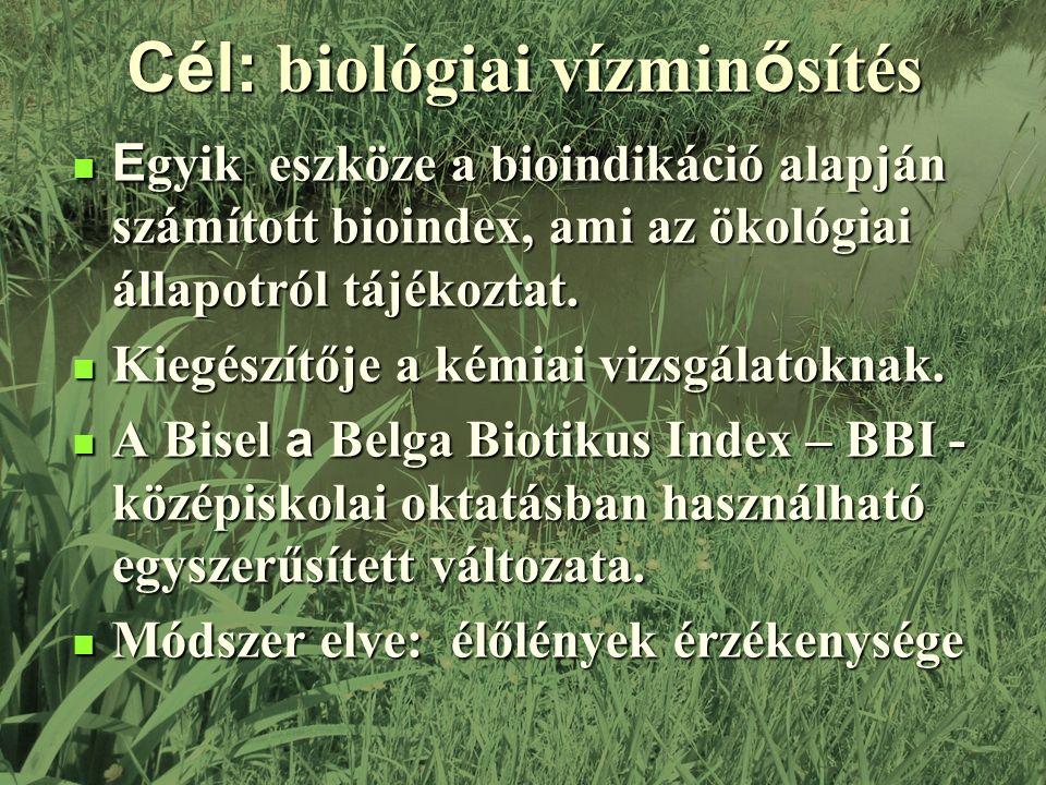 Cél: biológiai vízmin ő sítés E gyik eszköze a bioindikáció alapján számított bioindex, ami az ökológiai állapotról tájékoztat.