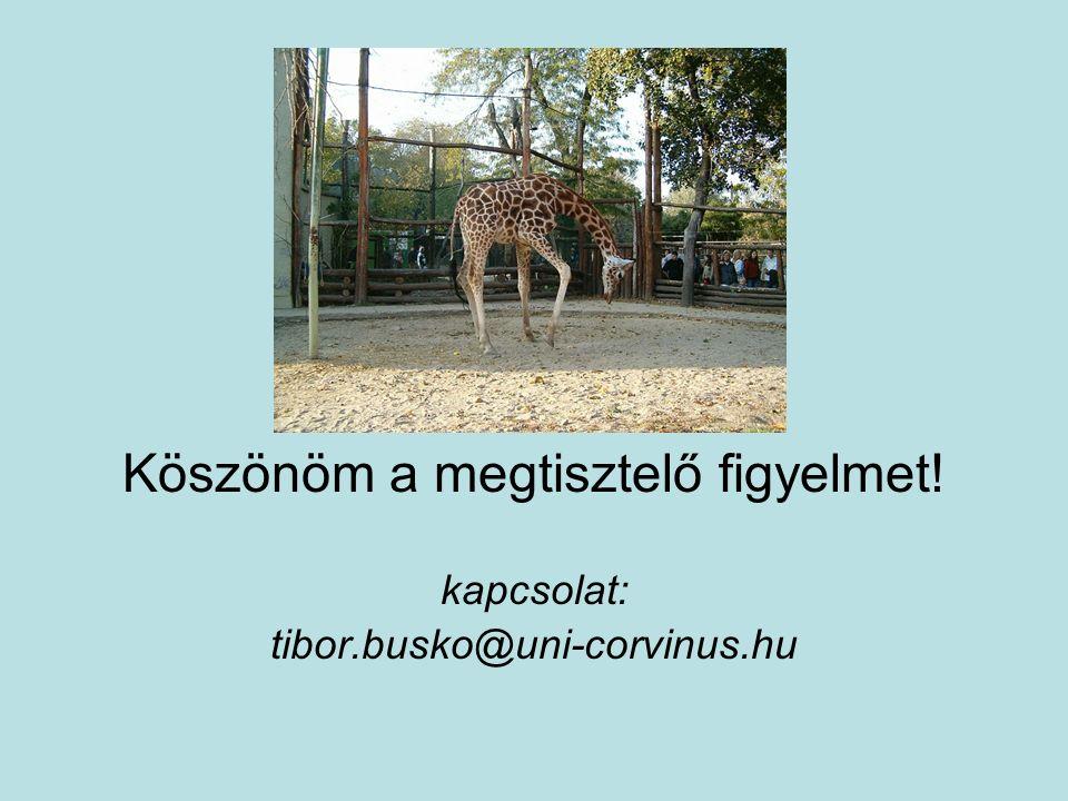 Köszönöm a megtisztelő figyelmet! kapcsolat: tibor.busko@uni-corvinus.hu