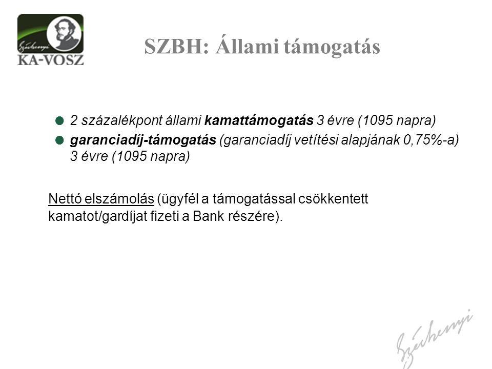 SZBH: Állami támogatás  2 százalékpont állami kamattámogatás 3 évre (1095 napra)  garanciadíj-támogatás (garanciadíj vetítési alapjának 0,75%-a) 3 évre (1095 napra) Nettó elszámolás (ügyfél a támogatással csökkentett kamatot/gardíjat fizeti a Bank részére).