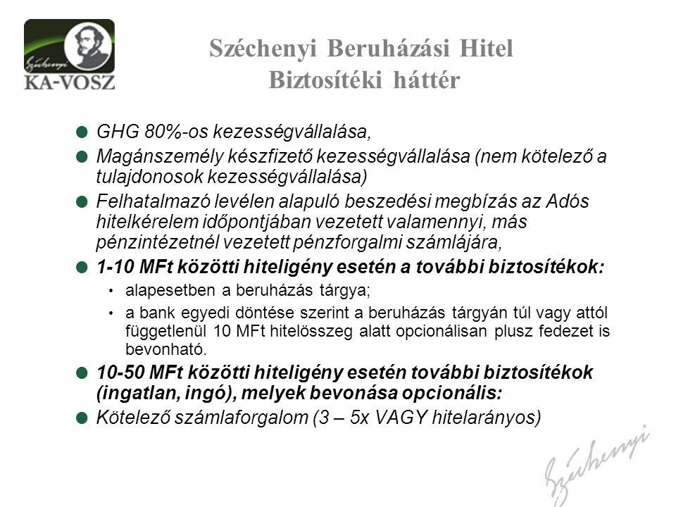 Széchenyi Beruházási Hitel Biztosítéki háttér  GHG 80%-os kezességvállalása,  Magánszemély készfizető kezességvállalása (nem kötelező a tulajdonosok