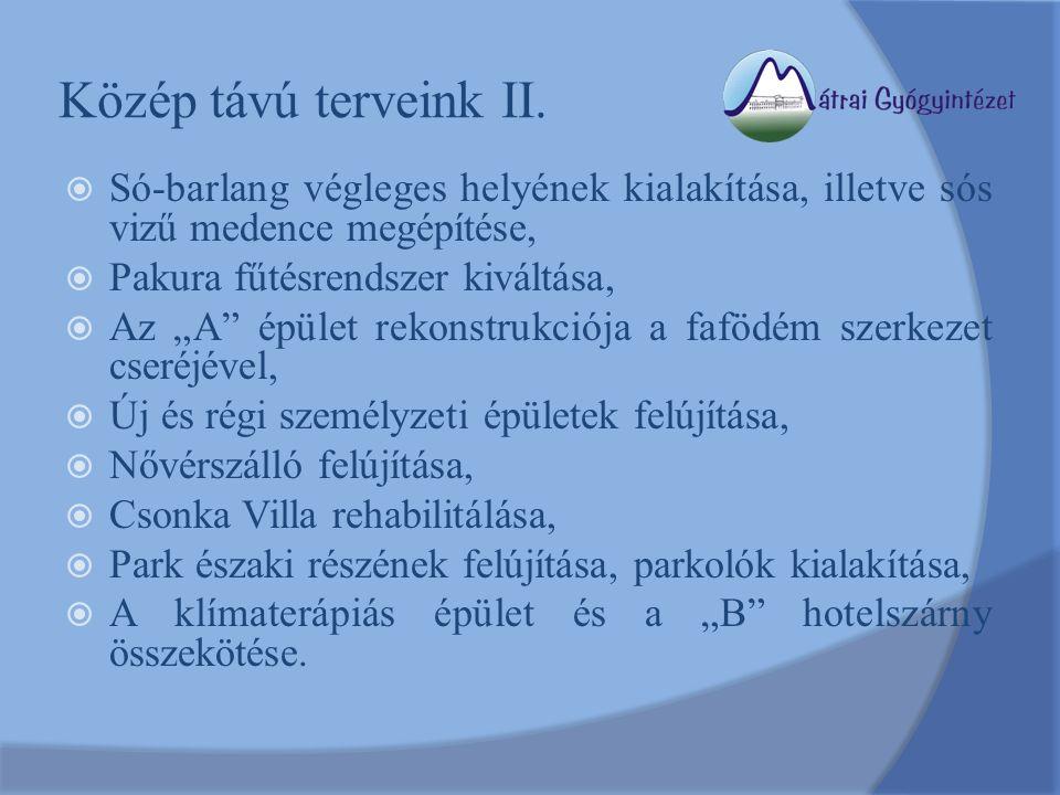 """Közép távú terveink II.  Só-barlang végleges helyének kialakítása, illetve sós vizű medence megépítése,  Pakura fűtésrendszer kiváltása,  Az """"A"""" ép"""