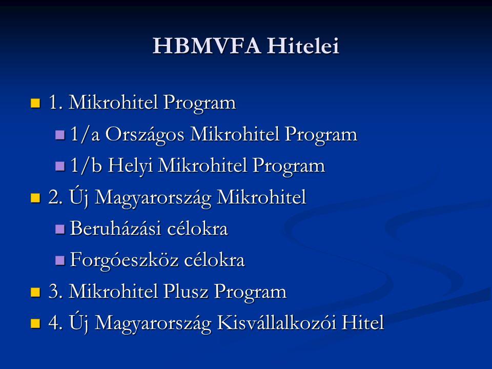 HBMVFA Hitelei 1. Mikrohitel Program 1.