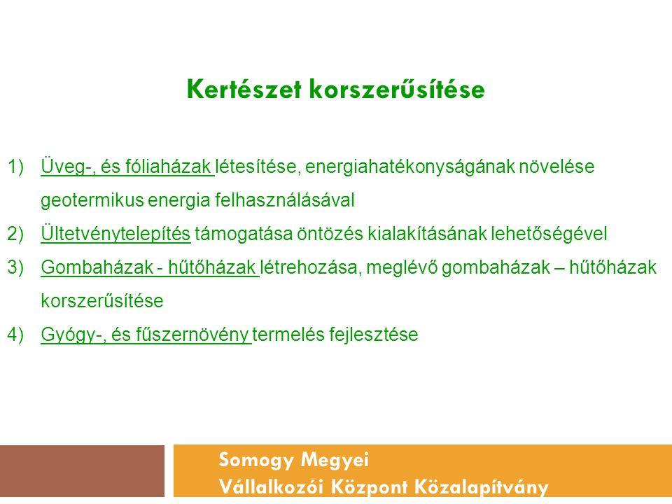 Kertészet korszerűsítése Somogy Megyei Vállalkozói Központ Közalapítvány 1)Üveg-, és fóliaházak létesítése, energiahatékonyságának növelése geotermikus energia felhasználásával 2)Ültetvénytelepítés támogatása öntözés kialakításának lehetőségével 3)Gombaházak - hűtőházak létrehozása, meglévő gombaházak – hűtőházak korszerűsítése 4)Gyógy-, és fűszernövény termelés fejlesztése