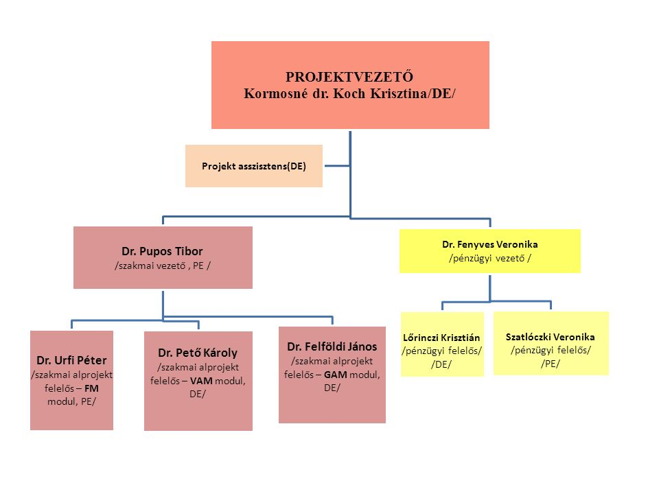 PROJEKTVEZETŐ Kormosné dr. Koch Krisztina/DE/ Dr.