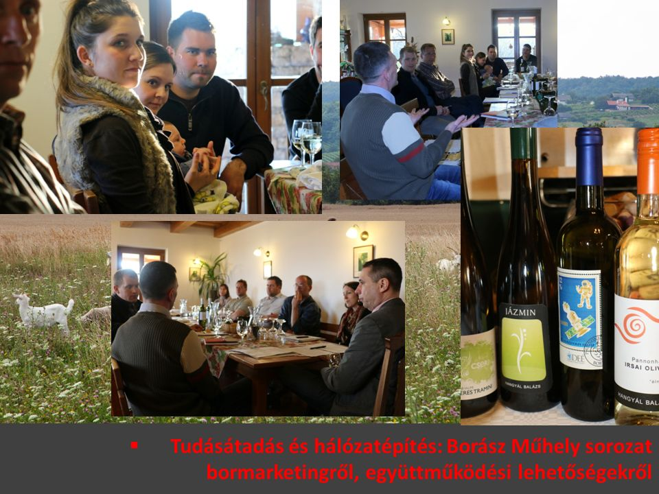  Tudásátadás és hálózatépítés: Borász Műhely sorozat bormarketingről, együttműködési lehetőségekről