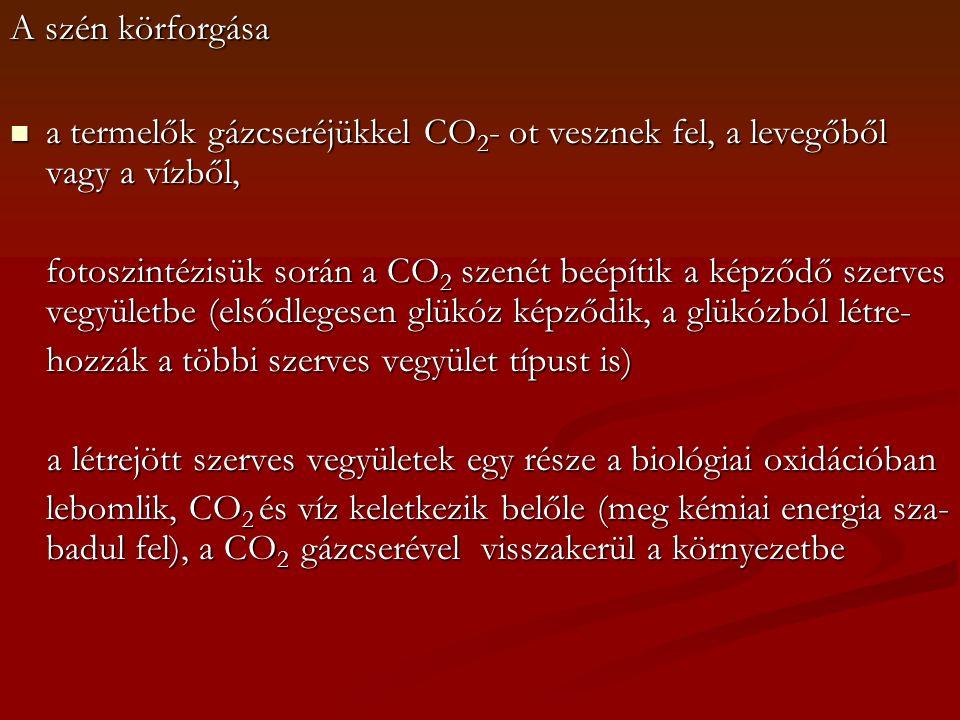 A szén körforgása a termelők gázcseréjükkel CO 2 - ot vesznek fel, a levegőből vagy a vízből, a termelők gázcseréjükkel CO 2 - ot vesznek fel, a leveg