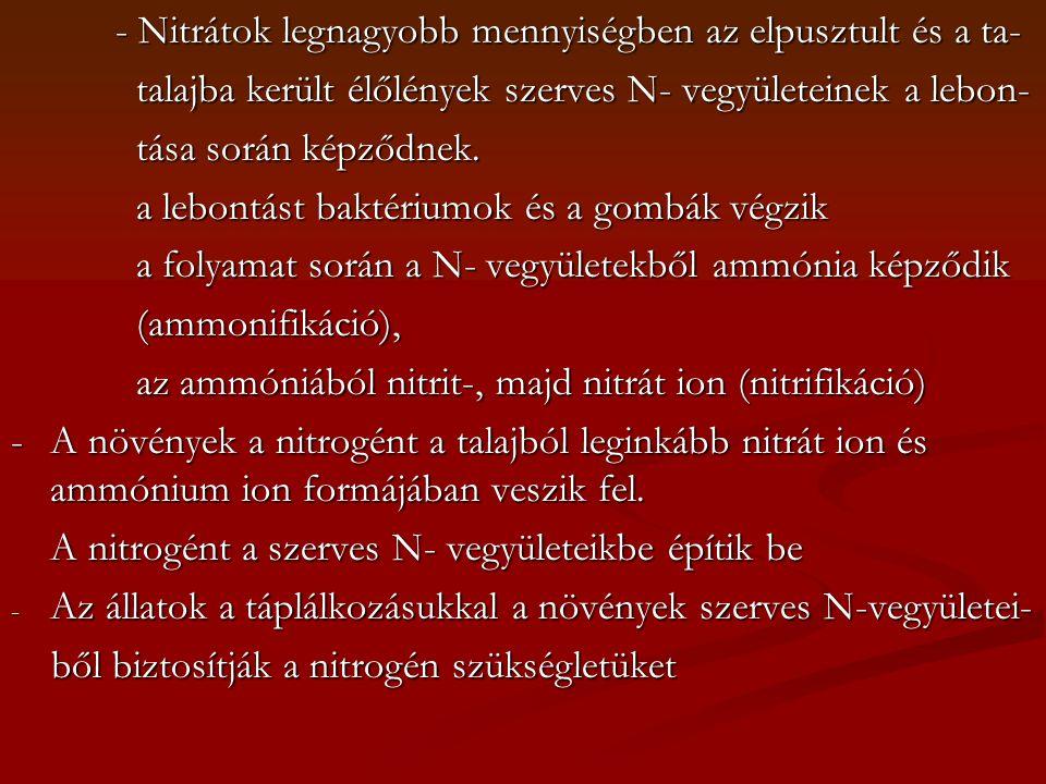 - Nitrátok legnagyobb mennyiségben az elpusztult és a ta- talajba került élőlények szerves N- vegyületeinek a lebon- talajba került élőlények szerves