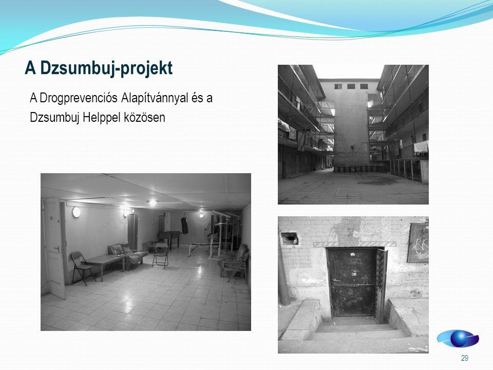 A Dzsumbuj-projekt A Drogprevenciós Alapítvánnyal és a Dzsumbuj Helppel közösen 29