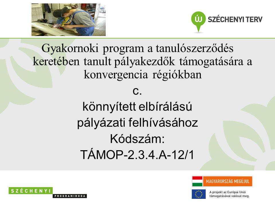 Gyakornoki program a tanulószerződés keretében tanult pályakezdők támogatására a konvergencia régiókban c. könnyített elbírálású pályázati felhívásáho