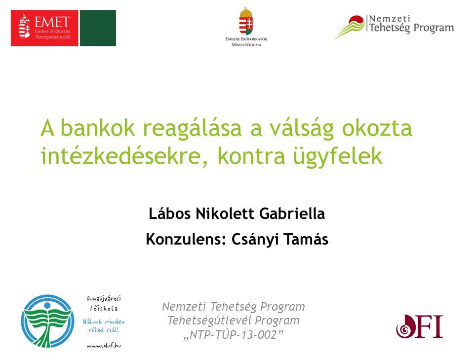 A bankok reagálása a válság okozta intézkedésekre, kontra ügyfelek Lábos Nikolett Gabriella Konzulens: Csányi Tamás Nemzeti Tehetség Program Tehetségú