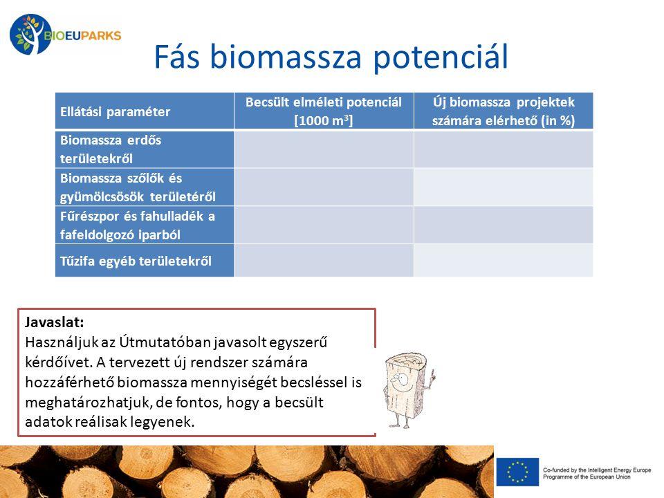 Fás biomassza potenciál Ellátási paraméter Becsült elméleti potenciál [1000 m 3 ] Új biomassza projektek számára elérhető (in %) Biomassza erdős területekről Biomassza szőlők és gyümölcsösök területéről Fűrészpor és fahulladék a fafeldolgozó iparból Tűzifa egyéb területekről Remark: *1 this percentage is only an estimation, for example it represents the percentage of wood biomass from forests that could be used in a new wood biomass system – the present use of wood biomass in households and other existing heating systems should be taken into consideration.