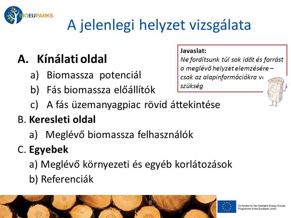A jelenlegi helyzet vizsgálata A. Kínálati oldal a)Biomassza potenciál b)Fás biomassza előállítók c)A fás üzemanyagpiac rövid áttekintése B. Keresleti