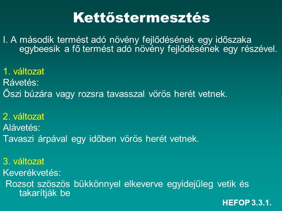 HEFOP 3.3.1.Az EU-ban bevált gyakorlat. 1988 óta alkalmazott módszer.
