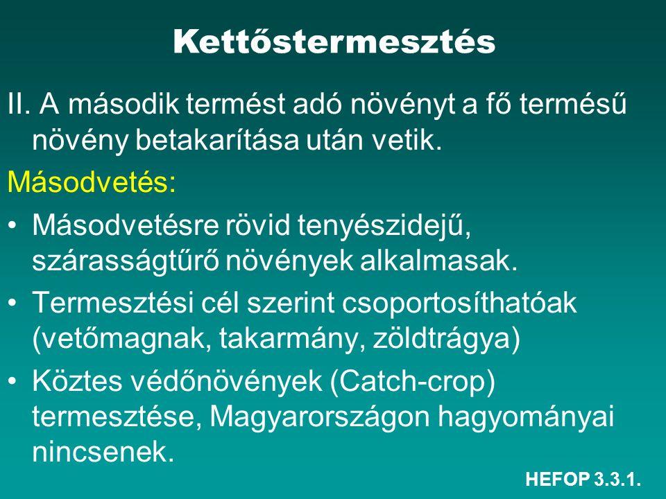 HEFOP 3.3.1. II. A második termést adó növényt a fő termésű növény betakarítása után vetik.