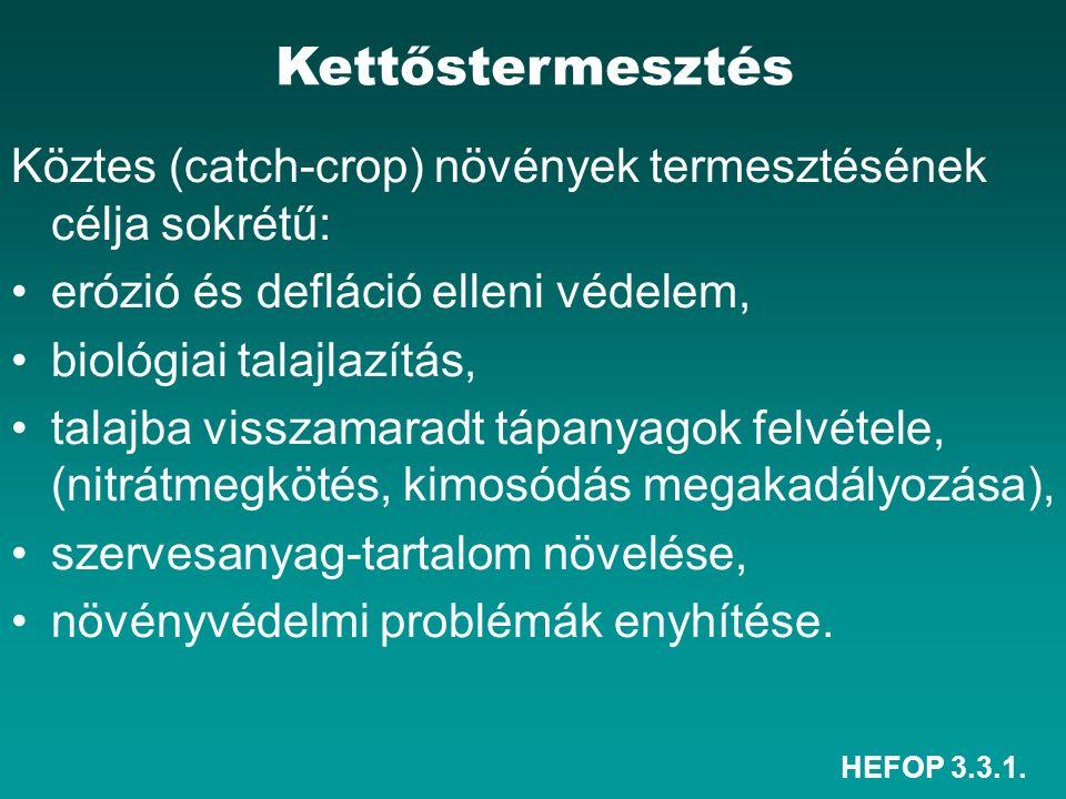 HEFOP 3.3.1. Köztes (catch-crop) növények termesztése