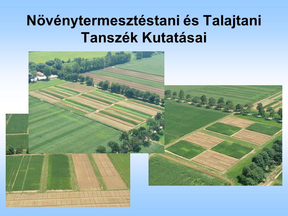 Növénytermesztéstani és Talajtani Tanszék Kutatásai