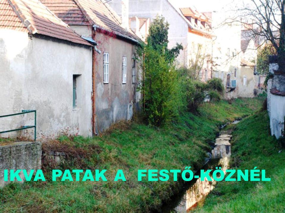 FESTŐKÖZ