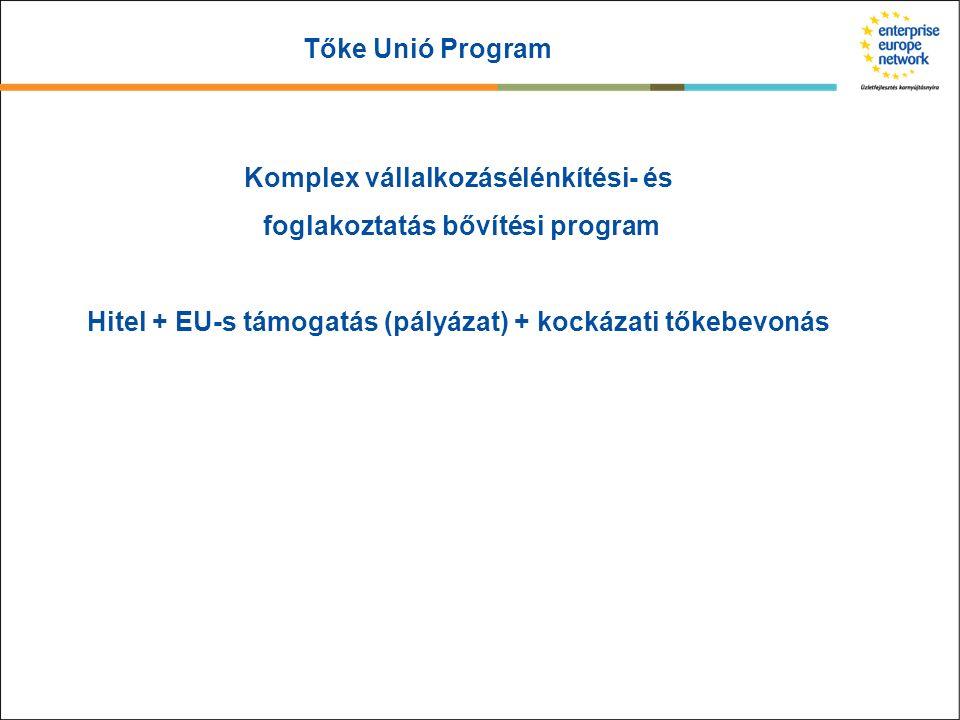 Tőke Unió Program Komplex vállalkozásélénkítési- és foglakoztatás bővítési program Hitel + EU-s támogatás (pályázat) + kockázati tőkebevonás