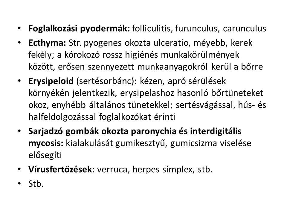 Foglalkozási pyodermák: folliculitis, furunculus, carunculus Ecthyma: Str.